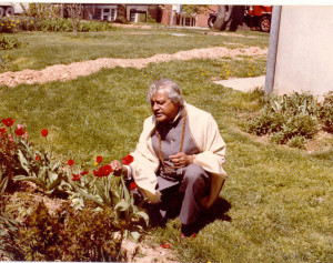 Gururaj in the Garden